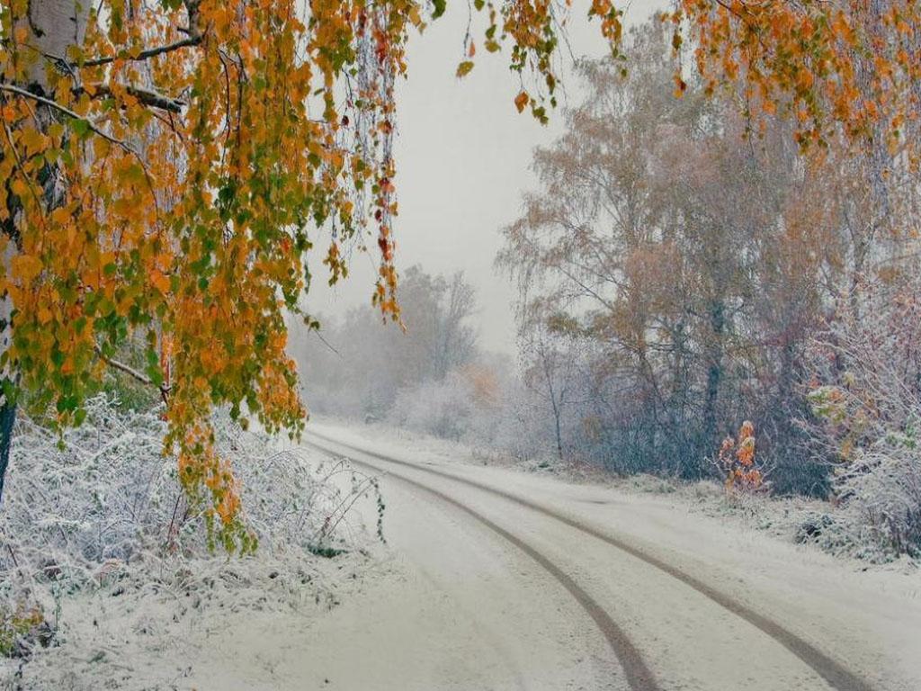 картинки первый снег и осень все