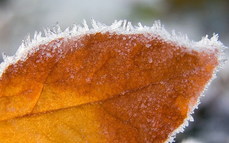 Картинки на рабочий стол осень и зима (1)