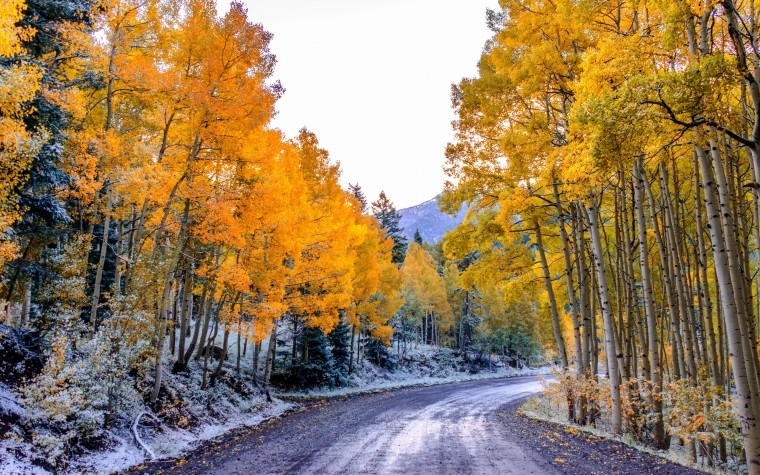 Картинки на рабочий стол осень и зима (11)
