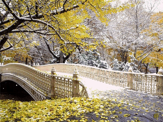 Картинки на рабочий стол осень и зима (12)