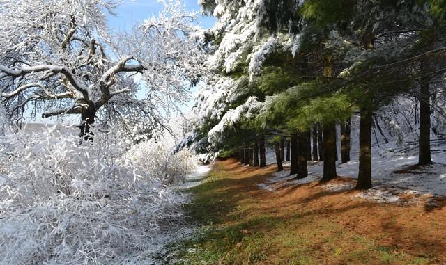 Картинки на рабочий стол осень и зима (13)