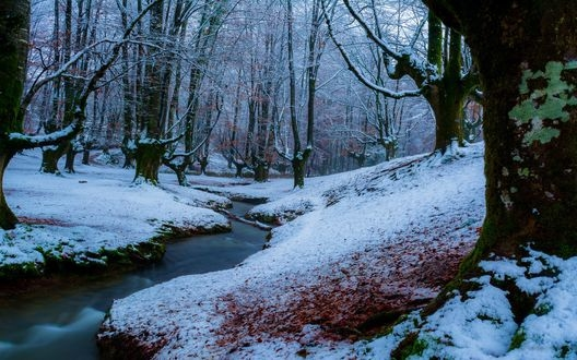 Картинки на рабочий стол осень и зима (4)