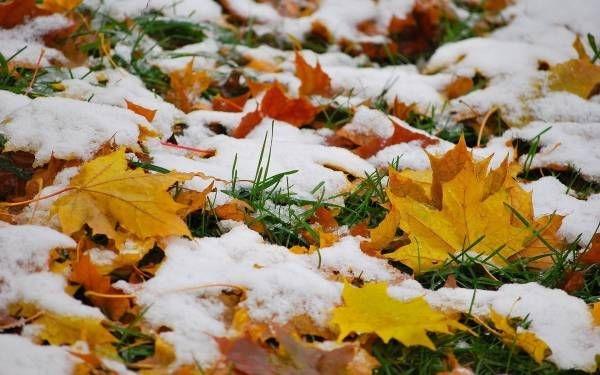 Картинки на рабочий стол осень и зима (5)