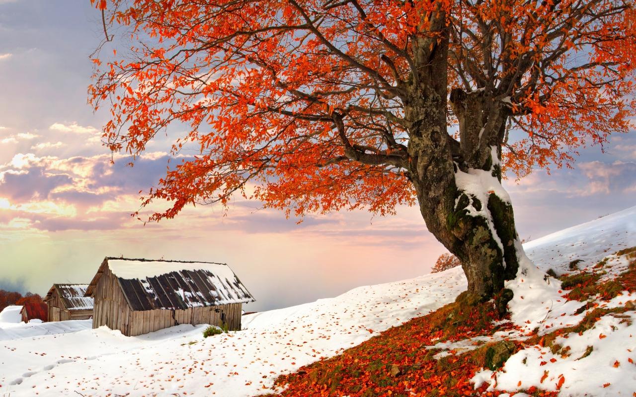 Картинки на рабочий стол осень и зима (6)