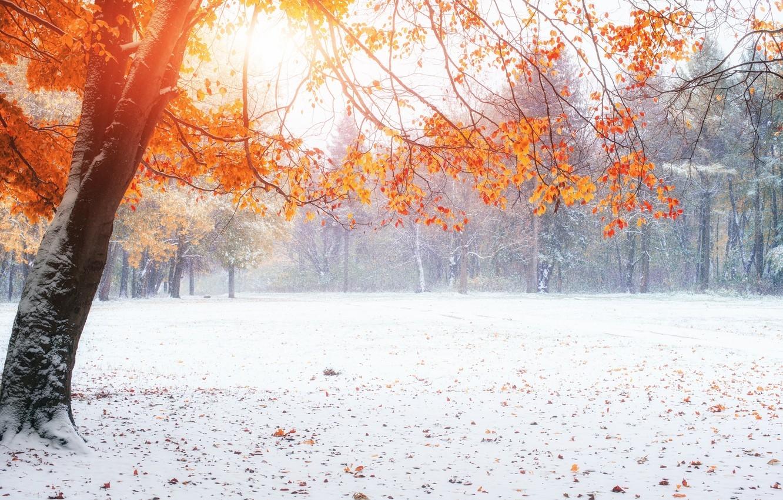 Картинки на рабочий стол осень и зима (7)