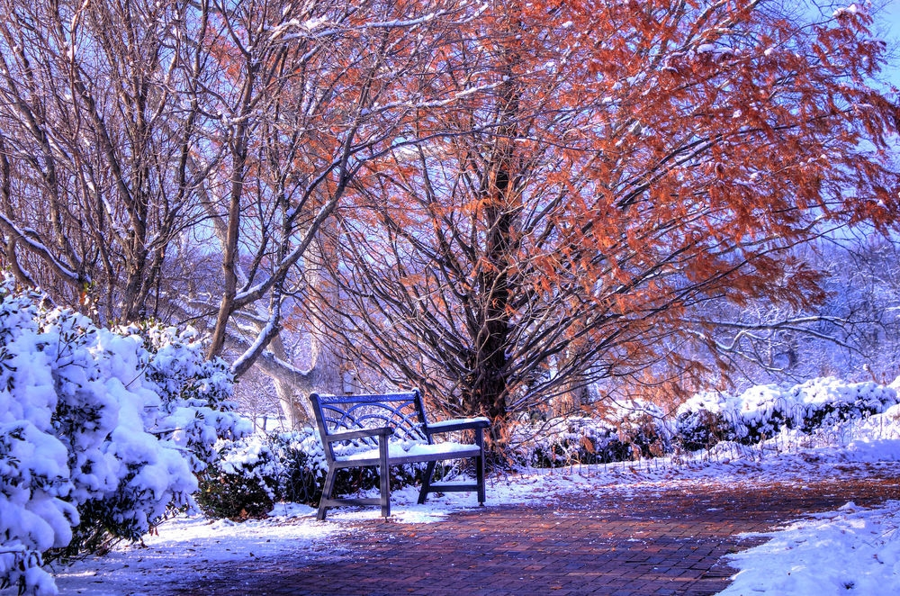 Картинки на рабочий стол осень и зима (8)