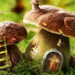 Картинки осень грибы на рабочий стол на весь экран