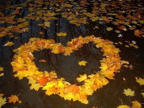 Картинки осень и любовь очень милые (15)