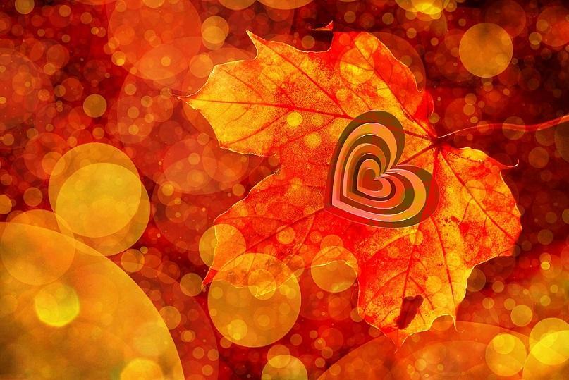 Картинки осень и любовь очень милые (3)