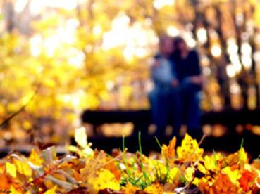 Картинки осень и любовь очень милые (4)