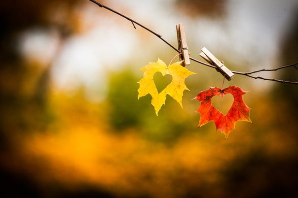 Картинки осень и любовь очень милые (8)