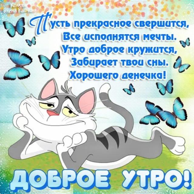Картинки привет и с добрым утром очень милые008