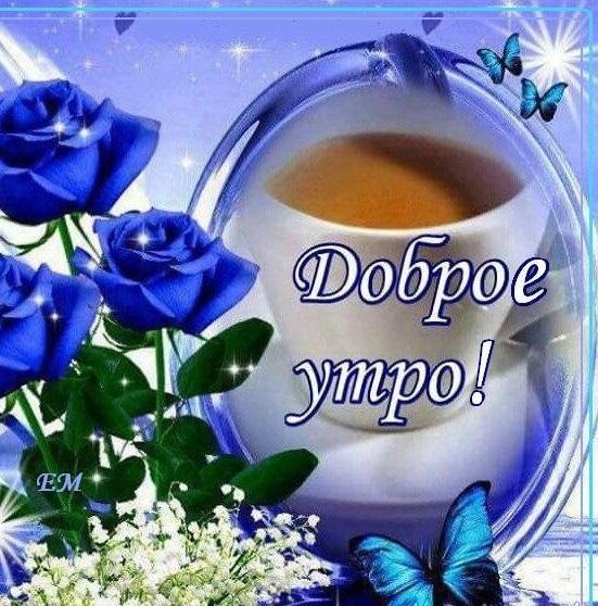 Картинки привет и с добрым утром очень милые010