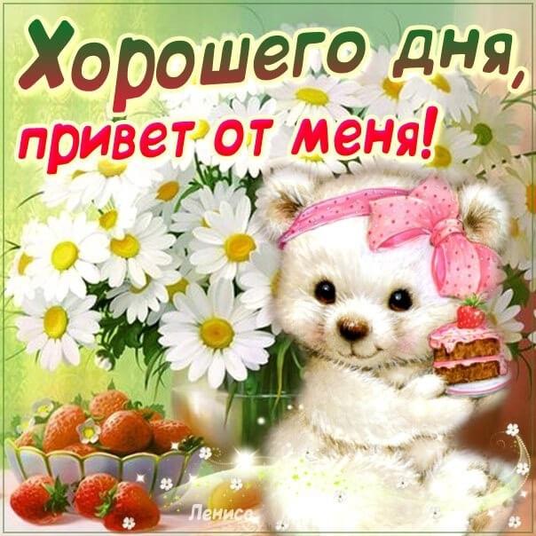 Картинки привет и с добрым утром очень милые014