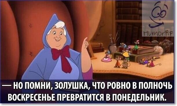 Картинки про воскресенье прикольные с юмором005