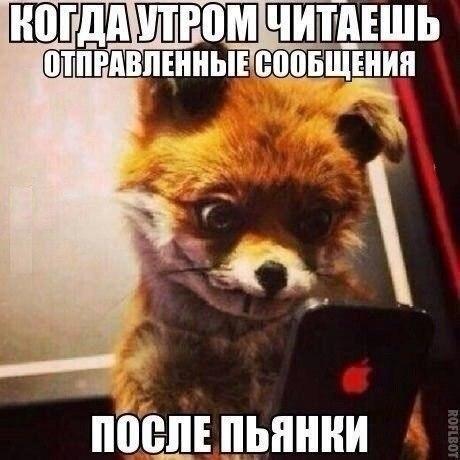 Картинки про воскресенье прикольные с юмором020
