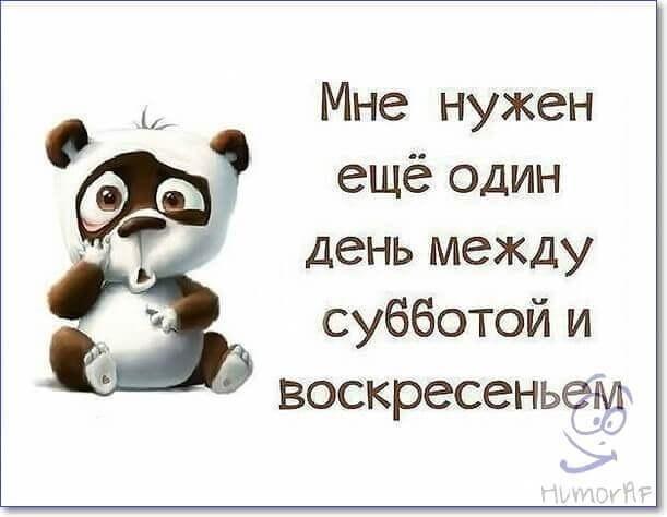 Картинки про воскресенье прикольные с юмором023