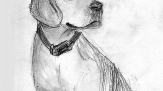 Картинки рисунки на свободную тему (3)