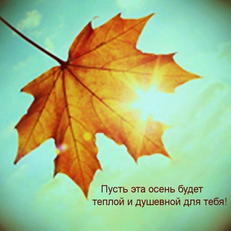 Картинки смешные до слез с надписями про осень003
