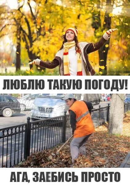 Картинки смешные до слез с надписями про осень020