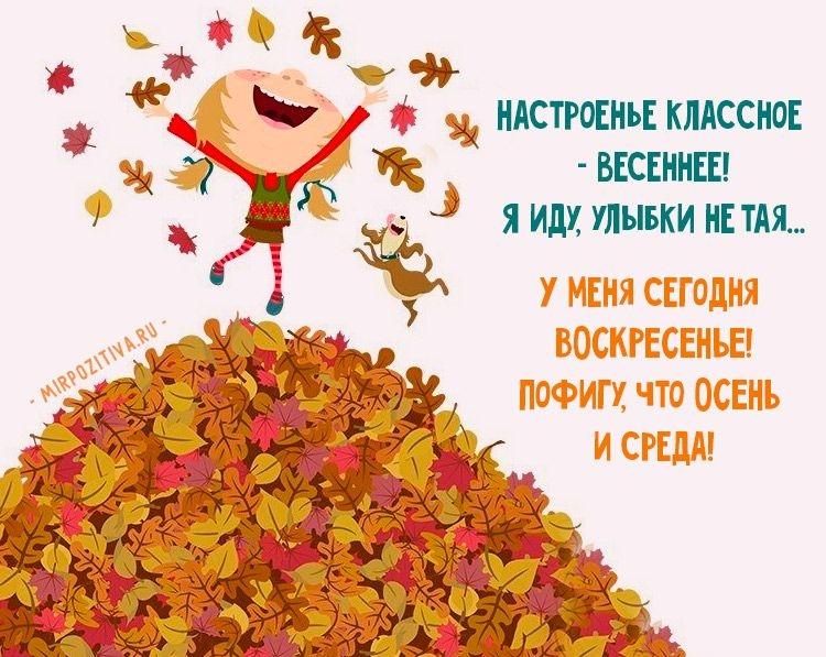 этом все смешные поздравления про осень все