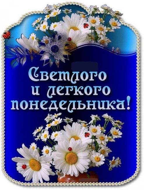 Картинки смешные с понедельником и удачной недели004