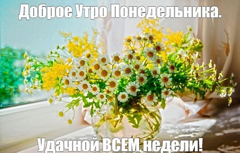 Картинки смешные с понедельником и удачной недели012