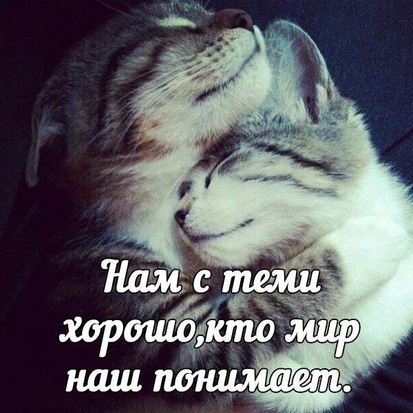 Картинки со смыслом о любви на аватарку010