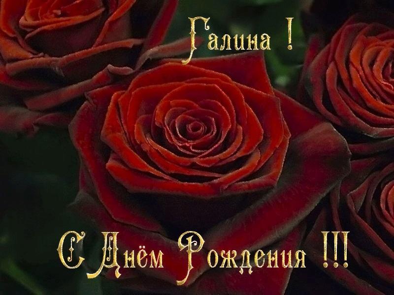 Картинки с днем рождения Галина анимация017
