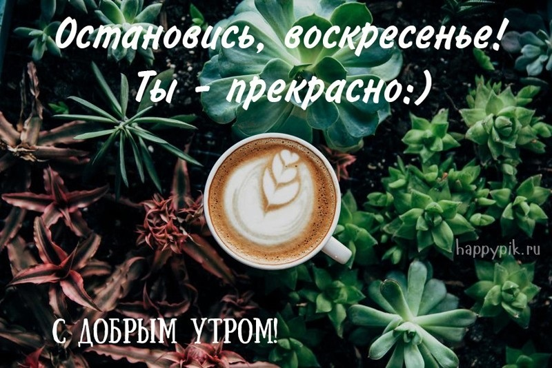 Картинки с добрым утром воскресенья016