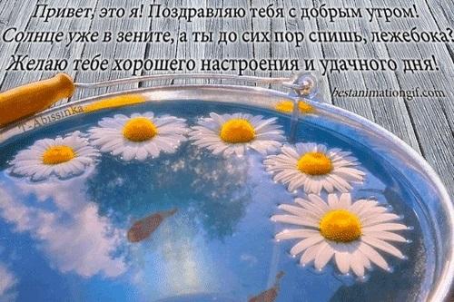 Картинки с добрым утром и хорошего дня гифки014