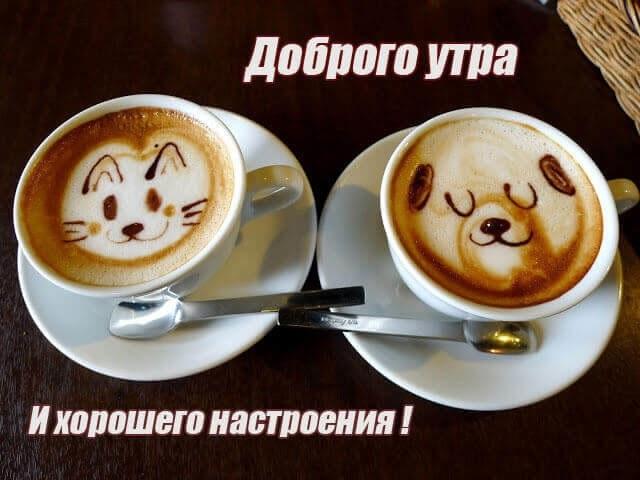 Картинки с добрым утром и хорошего настроения любимый009