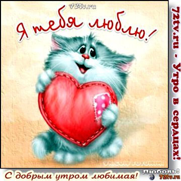 Картинки с добрым утром любимая, я люблю тебя (11)