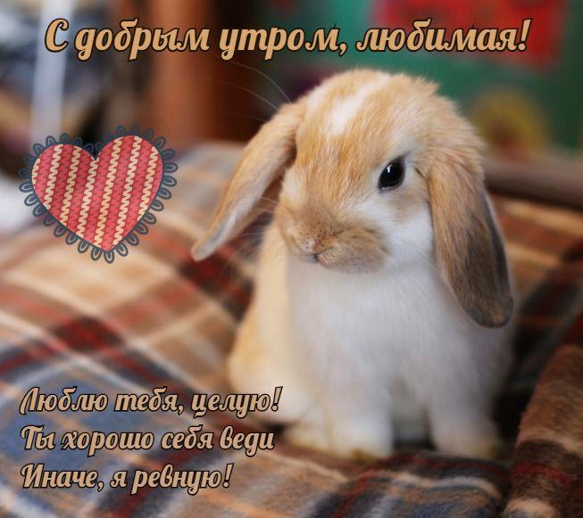Картинки с добрым утром любимая, я люблю тебя (2)