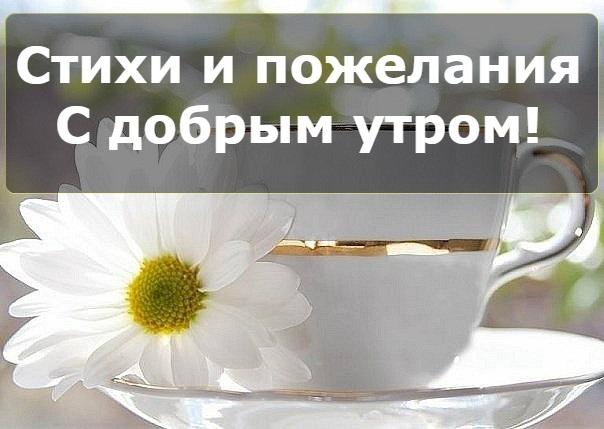 Картинки с добрым утром хорошего дня014