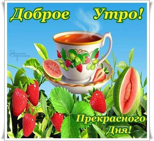 Картинки с добрым утром хорошего дня015
