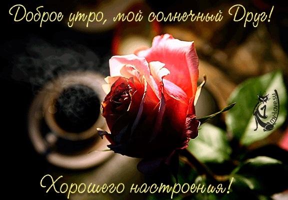 Картинки с любовью и нежностью с добрым утром010