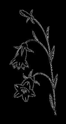 Картинки трафарет цветы колокольчики004