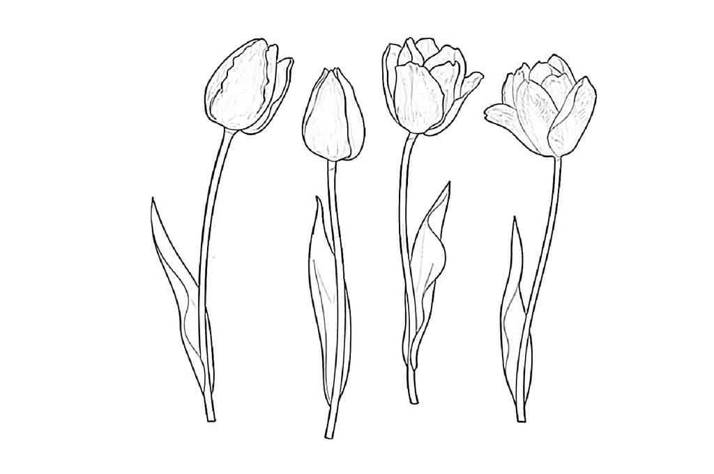 Картинки трафарет цветы колокольчики017