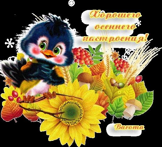 Картинки хорошего осеннего воскресенья006