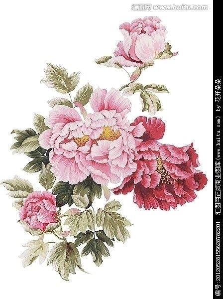 Китайские цветы рисунки и картинки004