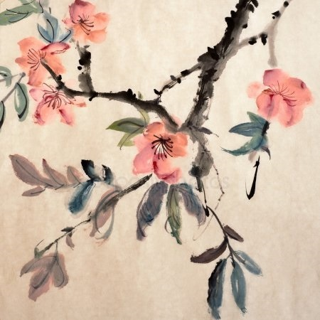 Китайские цветы рисунки и картинки008