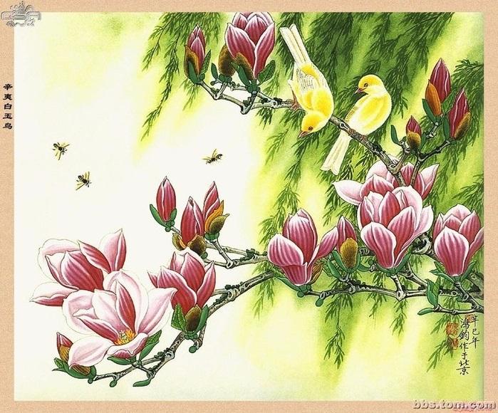 Китайские цветы рисунки и картинки014