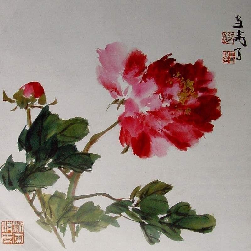Китайские цветы рисунки и картинки015