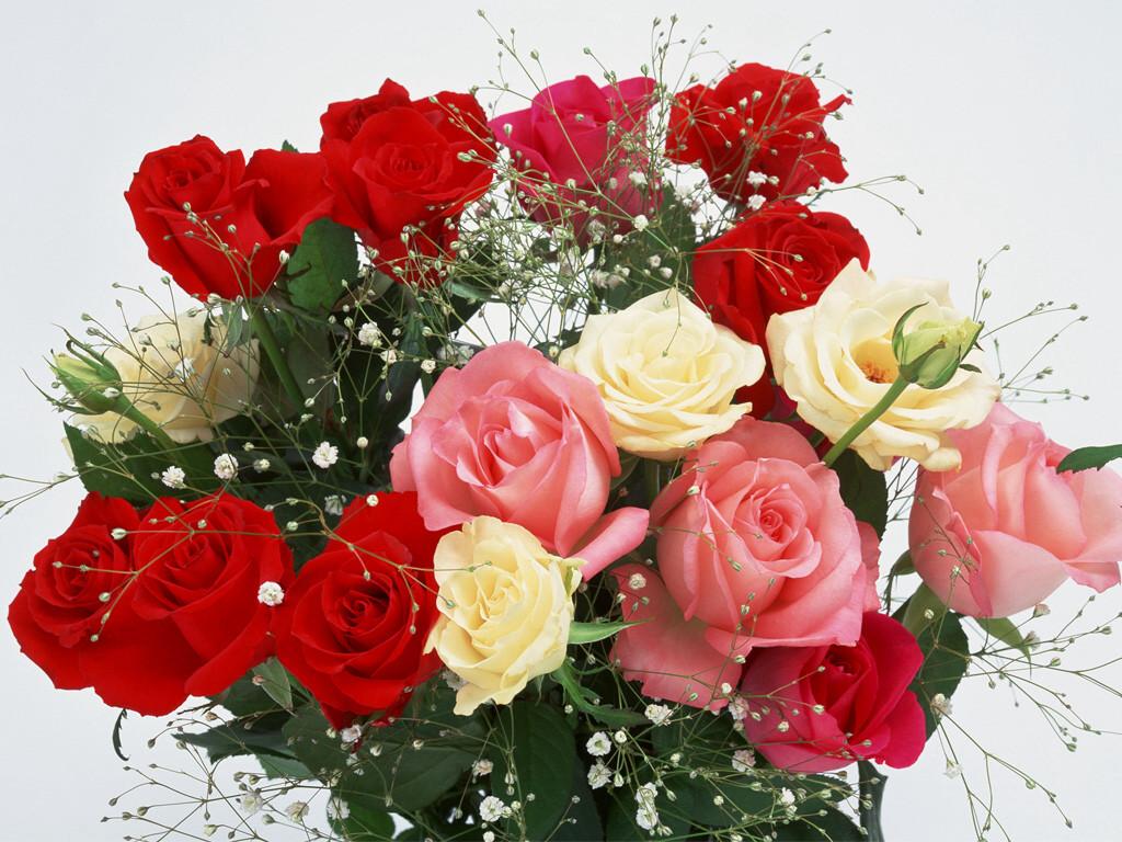 Классные картинки на рабочий стол октябрь цветы (12)