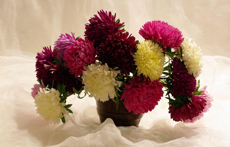 картинки на рабочий стол хризантемы букет удовольствие