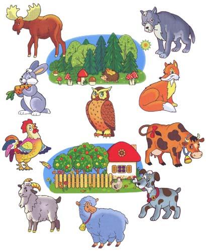Клипарт животные для детей на прозрачном фоне - сборка (17)