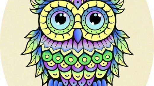 Красивая сова для поделки в картинках002