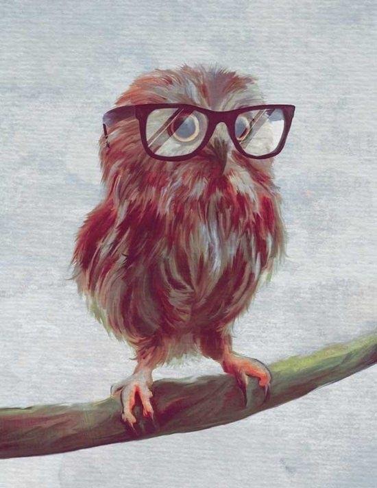 Красивая сова для поделки в картинках016