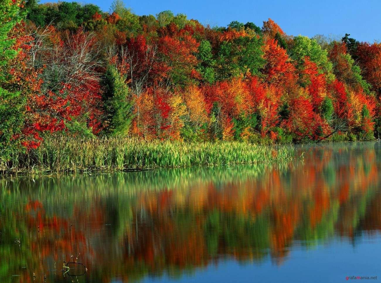 Открытки с красотой осенней природы